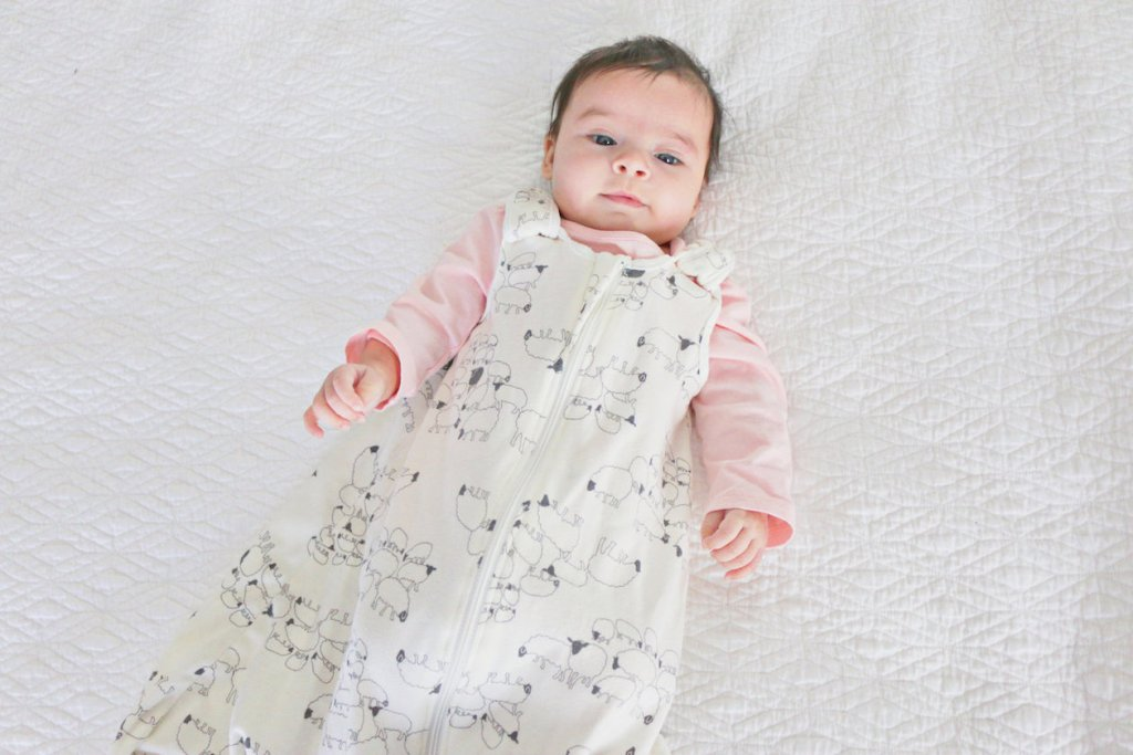ergobaby sleeping bag