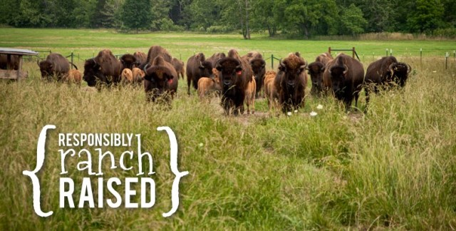 Responsibly Ranch Raised Bison