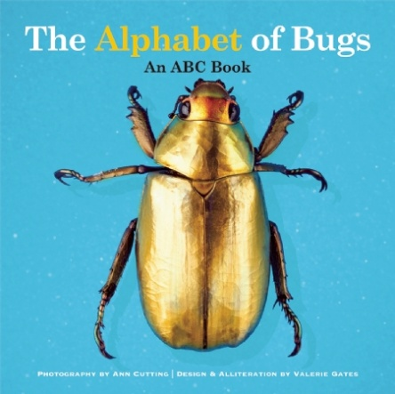 The Alphabet of Bugs