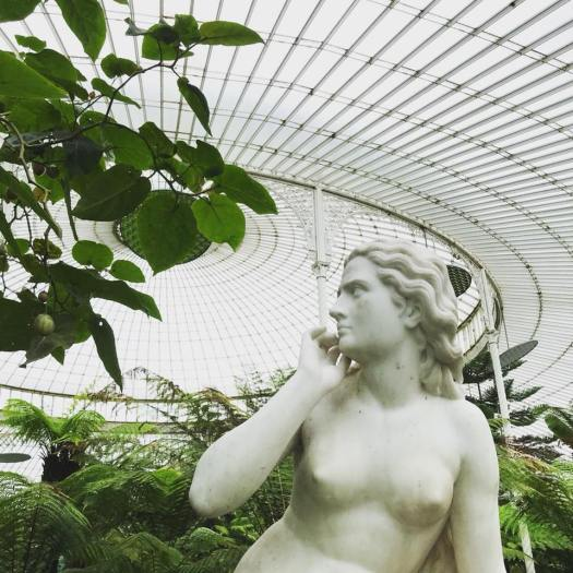 Photo of a marble statue in a greenhouse