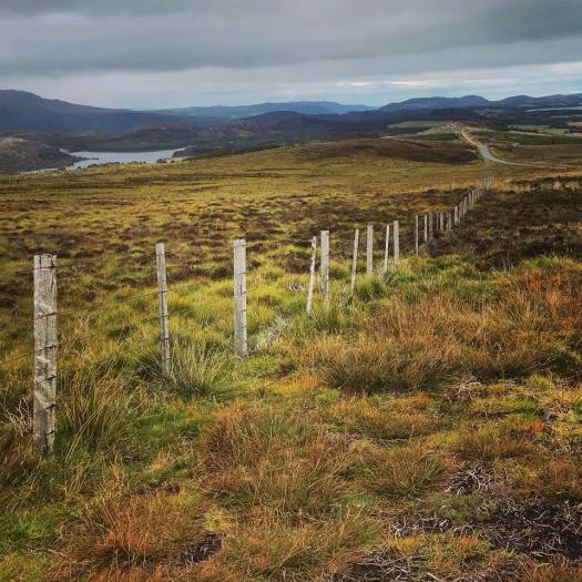 Photo of a fence through the highlands