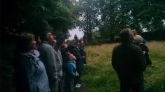 Party lookout for bats at Greenhall