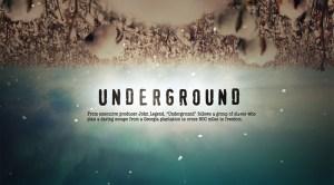 theblerdgurl_wgn_underground_aldishodge