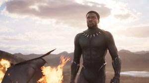 black panther, black panther back, theblerdgurl