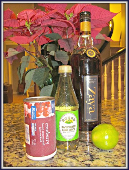 cranberry rum slush1