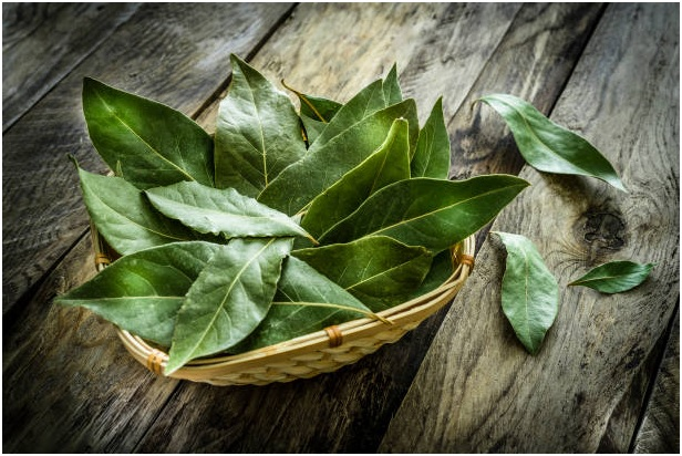 What Are The Benefits of Using the Bay Leaves