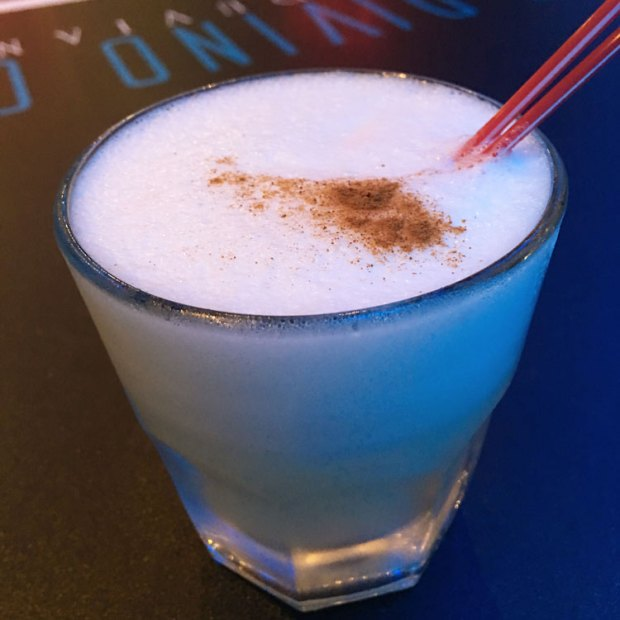 South-Florida-Bloggers-Happy-Hour-Pisco-Sour