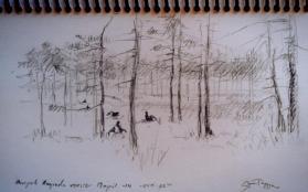 Sketch page - Gunnar Tryggmo