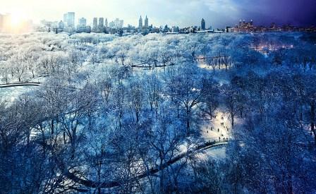 Central Park Snow, New York City © Stephen Wilkes