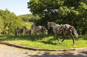 Horses Follow