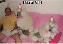 party2jpg