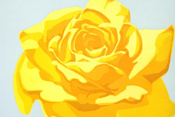 ks-Rose-570x382