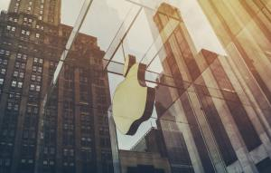 apple-building-company-offices-513770
