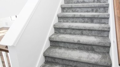 Photo of STAIRWAYS CARPET – Add Elegance and Warm thru To Your Home