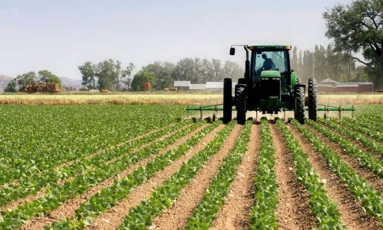 Best ways to improve agricultural productivity and efficiency