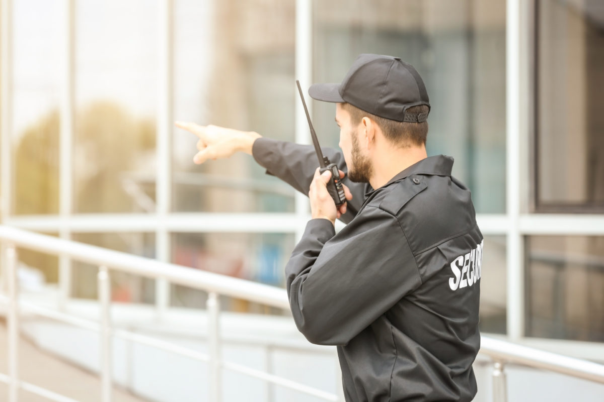 skywatch professional security guard