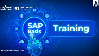 Photo of How to Start Your Career Upgrade with SAP Basis?