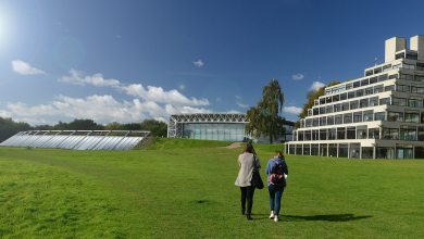 Photo of International Scholarships at University of East Anglia