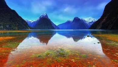 Photo of 9 Top Tourist Attractions in New Zealand