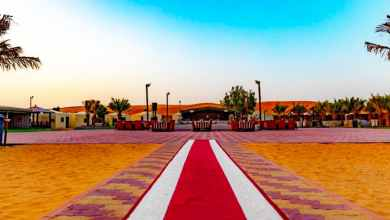 Photo of Get an amazing experience of VIP Desert Safari & Attractions of UAE