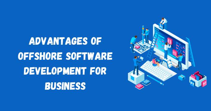 Software Development for Business