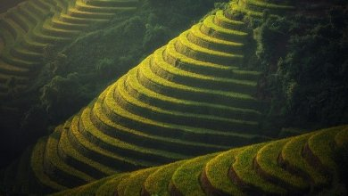 Photo of 8 BEST THINGS TO DO IN HA GIANG AND NORTH VIETNAM