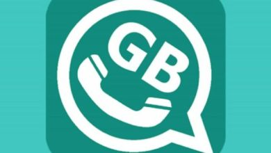 Photo of The GB WhatsApp Mod application and its features and how to download it
