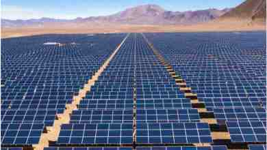 Photo of Which is the Leading Solar Panel Manufacturing Plant?