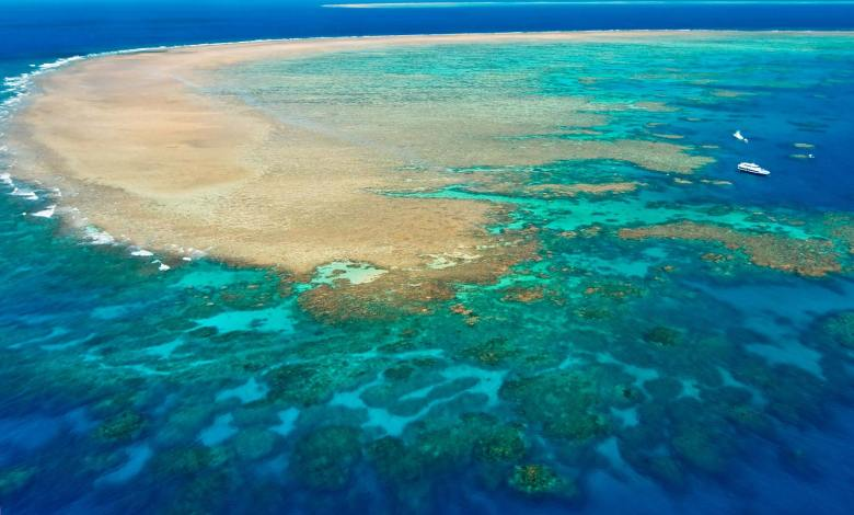 Great Barrier Reef- Ezeparking