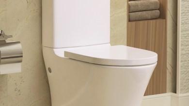 Photo of Rimless Close Coupled Toilet