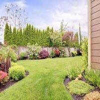 Photo of Ways to get rid of garden weeds
