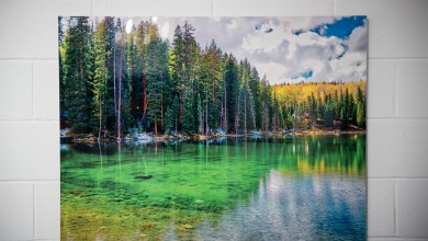 Photo of What You Should Know About Canvas Print?