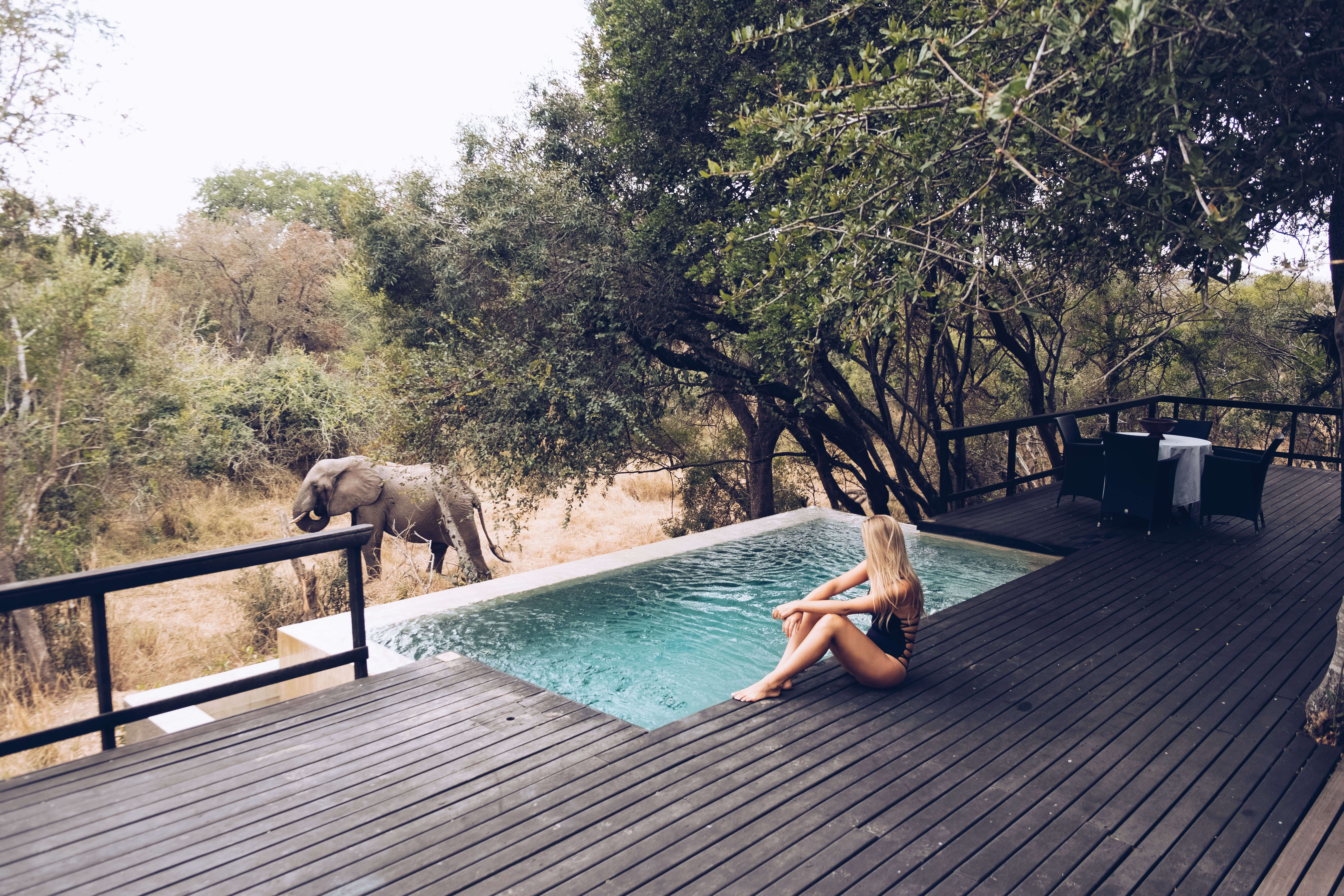 Staying At Royal Malewane In South Africa The Blonde Abroad
