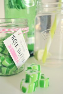 Naughty But Nice Sweet Treats With Holly's Lollies! 1