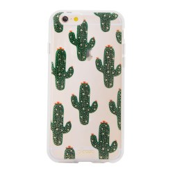 saguaro_ip6_front_web