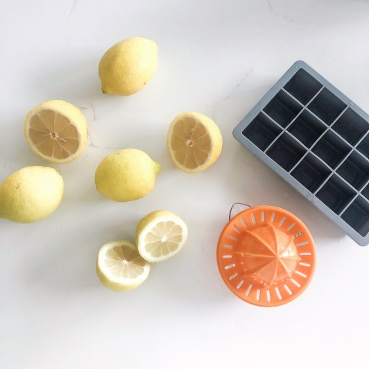 lemons, lemon juicer and ice cube tray on a kitchen counter