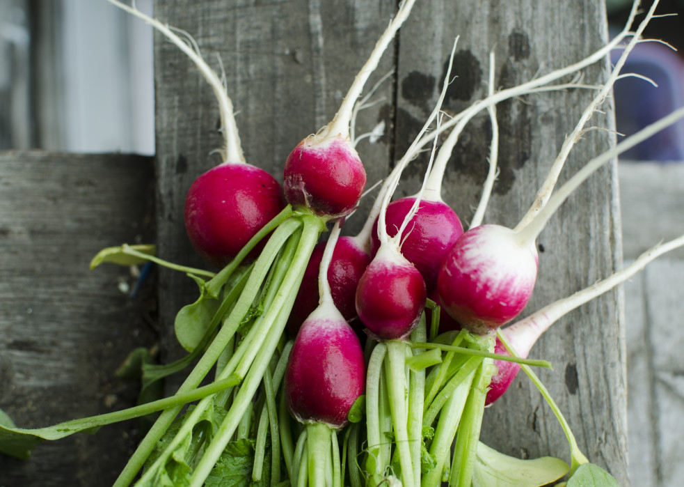 bunch of radishes on wooden floor