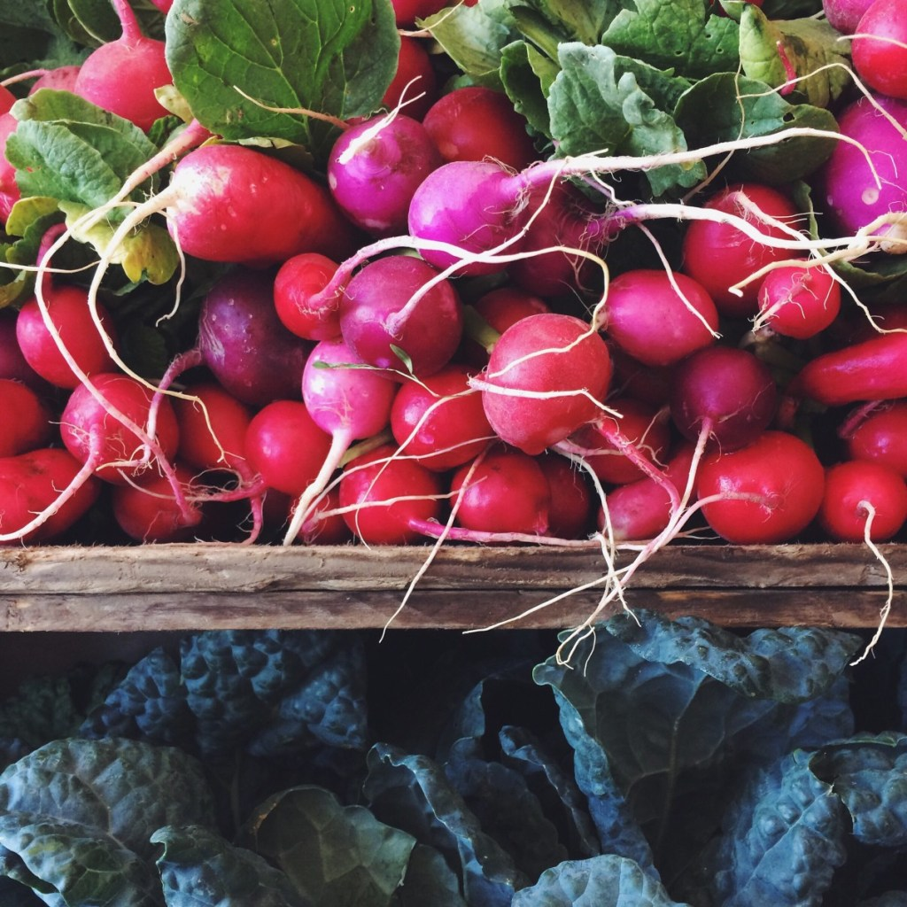 A bunch of radishes and some kale