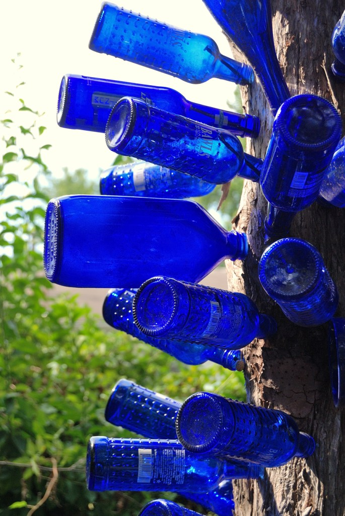 Picture of cobalt blue bottles installed on a tree trunk.