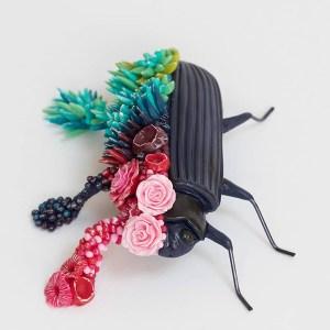 Beetle mushroom by Stéphanie Kilgast of PetitPlat