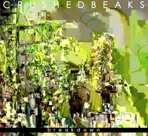 Crushed Beaks - Breakdown