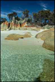 Cosy Corner Beach, lichen covered rocks and crystal clear waters, Bay of Fires, Tasmania