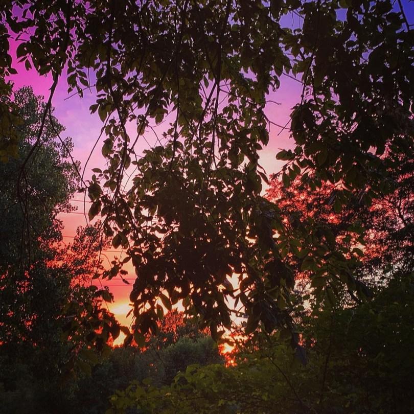 Peak-Summer-Triggers-Transformation-Bob Davis Podcast 847