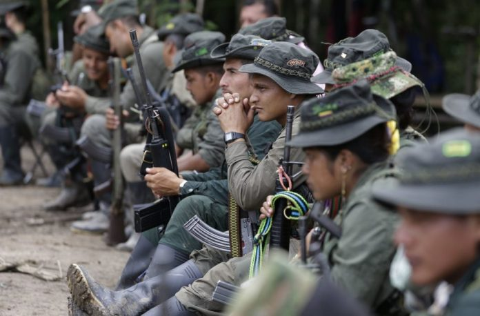 Colombian conflict, FARC soldiers, FARC reintegration