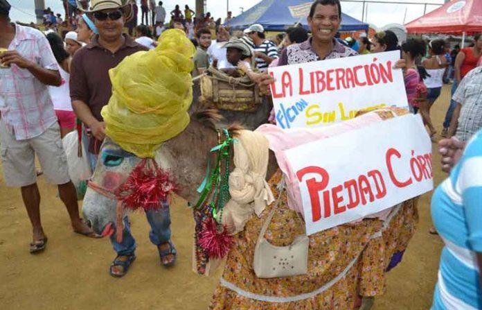 Colombian festivals, Festival Nacional del Burro San Antero.