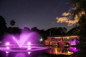 Jardín Botánico – Nocturno @ Jardín botánico de Bogotá   Bogotá   Bogotá   Colombia