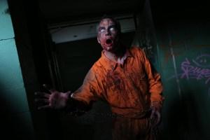 Survival Zombie @ La Candelaria