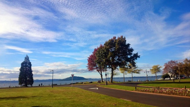 24 Hours in Rotorua: Geothermal Wonders, Maori Culture, Hot Springs, and other activities and things to do in Rotorua, New Zealand plus Rotorua hotels