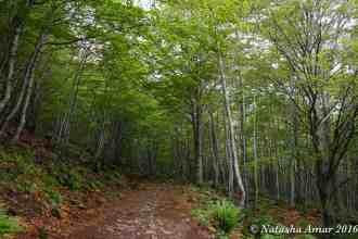 Alta Via Trail Italy