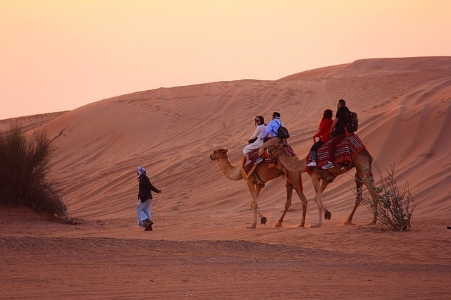 Tourists on a desert safari in Dubai ride camels./ What To Wear in Dubai: The Ultimate Dubai Packing List tells you how to pack for Dubai, whether it's a desert safari, shopping mall, mosque, beach, or nightclub in Dubai you're going to. My tips are from the perspective of a Dubai born and raised expat along with style tips for both men and women to help you gain cultural context when you pack for Dubai.